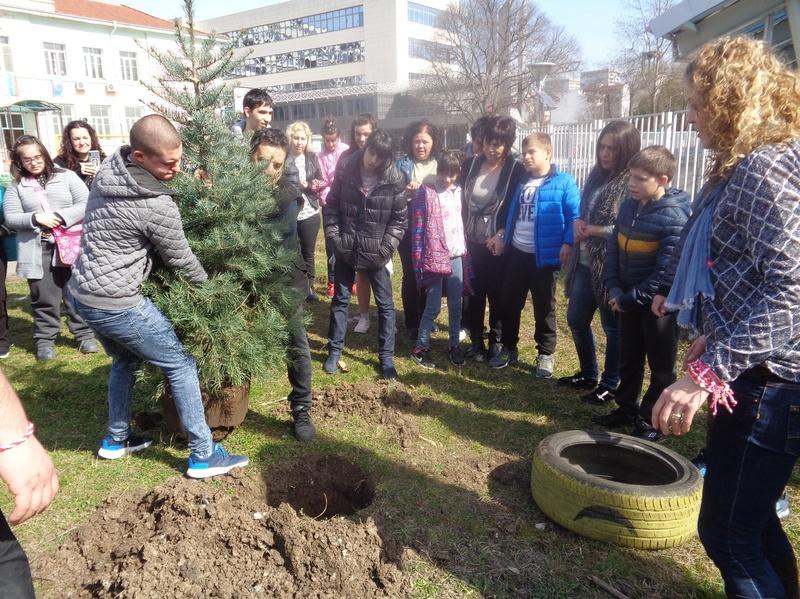 Засаждане на елхи, подарени от ОДМВР-Бургас 07.03.2019 г.